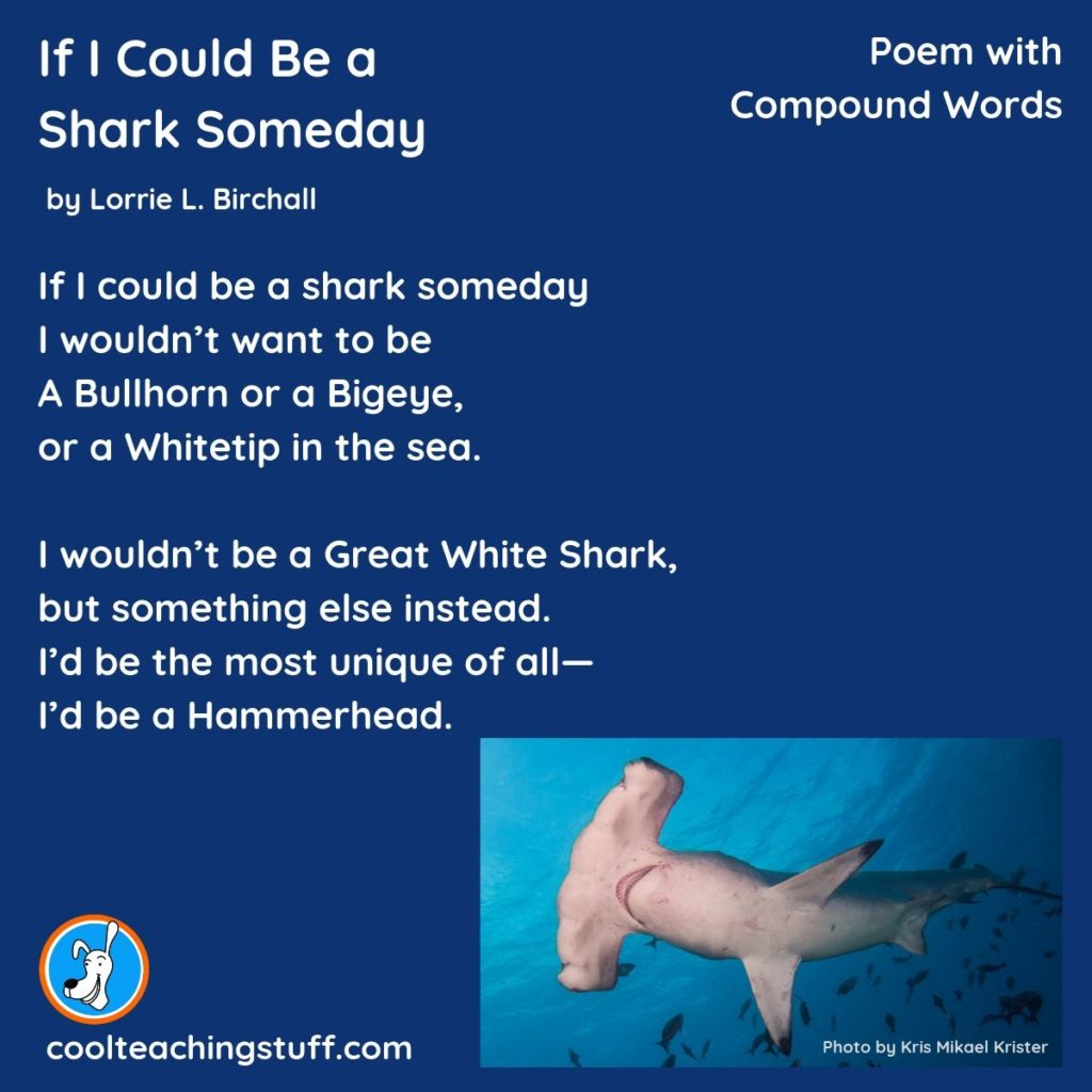 Image of poem If I Could Be a Shark Someday by Lorrie L. Birchall