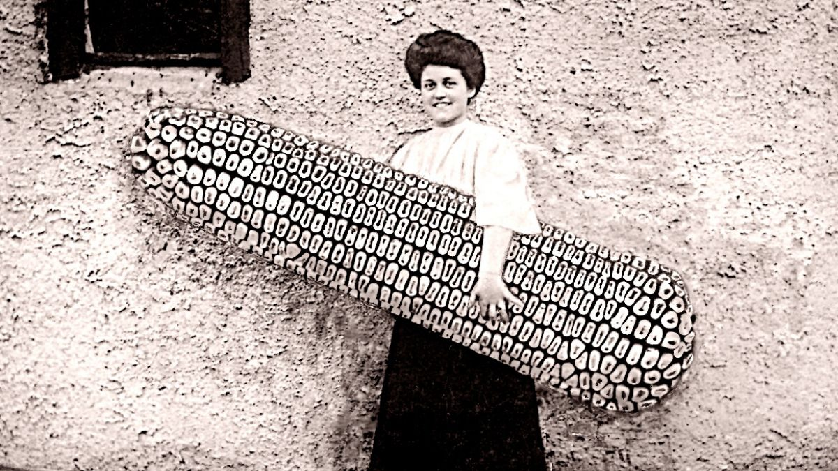 Image woman holding giant corn creative writing picture prompt