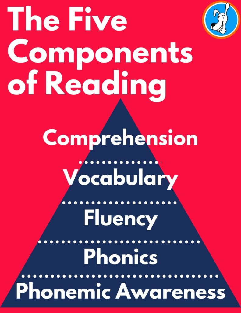 image five components of reading
