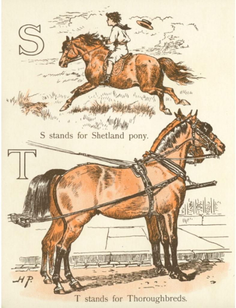 S is for Shetland pony alphabet books for teaching phonics